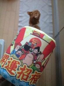 ずれずれブログ…湘南で猫と暮らせば…-091127_1516~0001.jpg