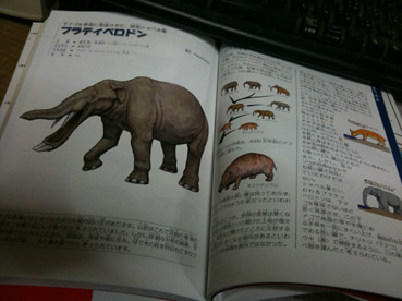 川崎悟司 オフィシャルブログ 古世界の住人 Powered by Ameba-絶滅した奇妙な動物p142~143