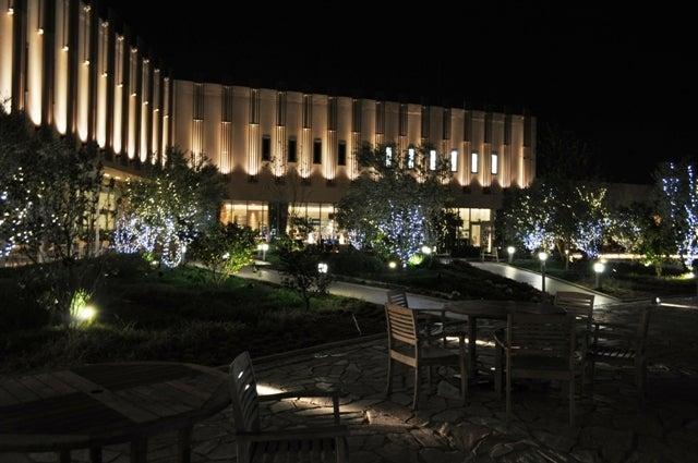 茶々吉とデジ一 のんびり旅-2009/11/28西宮ガーデンズ