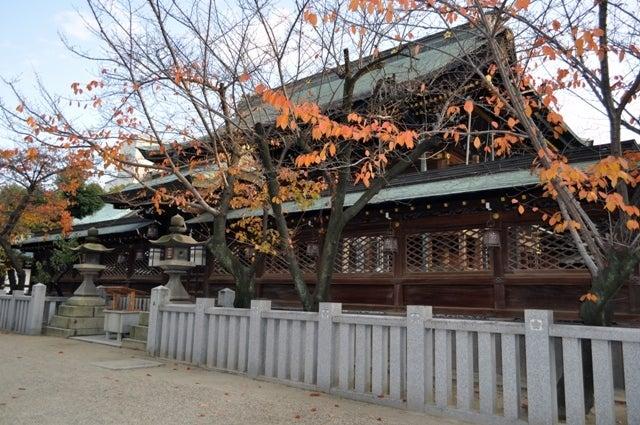 茶々吉とデジ一 のんびり旅-大阪天満宮3
