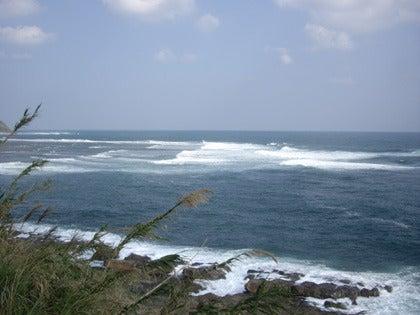 Shimizu 輪工房のブログ-宮崎の旅 ~海~ 7