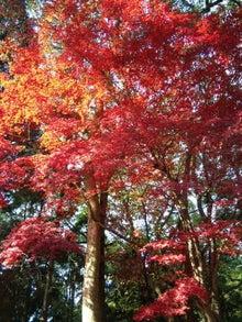 おちまさとプロデュース Tokyo Ochimasato Land-091204_124454.jpg