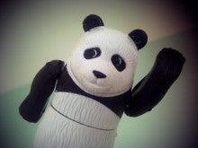 $cheltenhamのブログ-パンダ