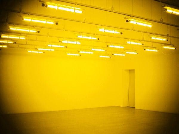 $cheltenhamのブログ-room for one colour