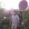 ジャマエルフナ広場でアラブの植物研究の画像