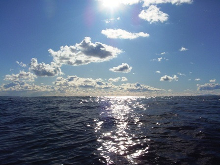 SURF & RUN, Life with SAMURAI SPIRIT