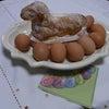 復活祭の羊(12月なのに?)の画像