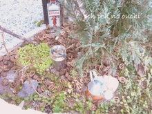 ☆福岡県でマイホーム☆ ~外断熱のおうちとシャビーシックな庭づくり~
