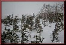 ロフトで綴る山と山スキー-1223_1139