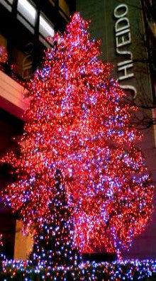 銀座かなめ屋のブログ-資生堂さんのクリスマスツリー