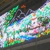 名駅イルミネーション☆2009☆その2の画像