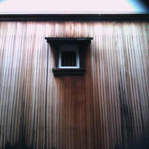 茶々吉とデジ一 のんびり旅-2009/12/25壁
