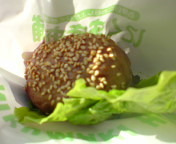 MAOCHI-20091226131417.jpg