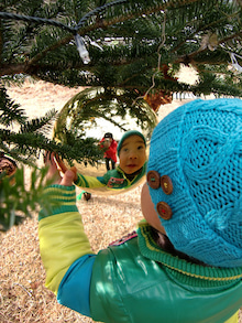 おかずブログ-ハルニレテラスのクリスマスツリー