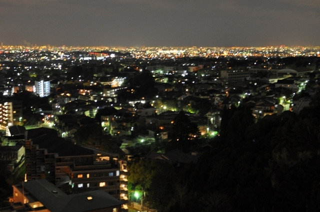 茶々吉とデジ一 のんびり旅-2009/12/29夜景