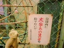 ☆なっちゃんブログ☆-CA3C0219.jpg