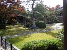夫婦世界旅行-妻編-源心庵の庭