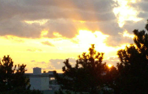 $パーソナルトレーナー勝村憲治のブログ     今日より素晴らしい明日のために・・・