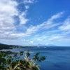 大晦日 TE MARAMA TAHITIの画像