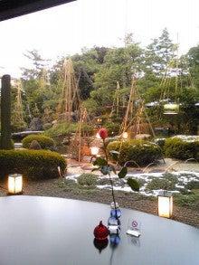 歩きたくなる径。-日本庭園。
