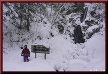 ロフトで綴る山と山スキー-0101_1407