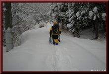 ロフトで綴る山と山スキー-0101_0838
