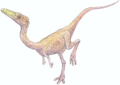 エマウサウルス