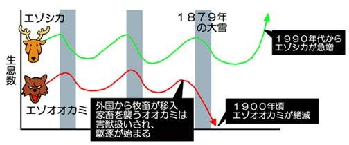 川崎悟司 オフィシャルブログ 古世界の住人 Powered by Ameba-エゾオオカミとエゾシカの生息数の関係