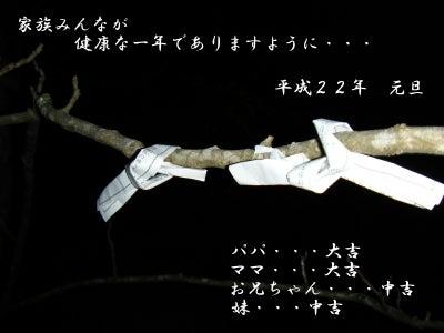 *** 桜の花が咲く頃に ***