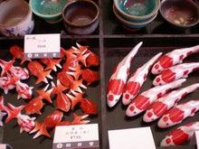夫婦世界旅行-妻編-偽装金魚
