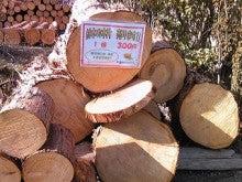 ワイズコムのスタッフブログ-木材の有効利用