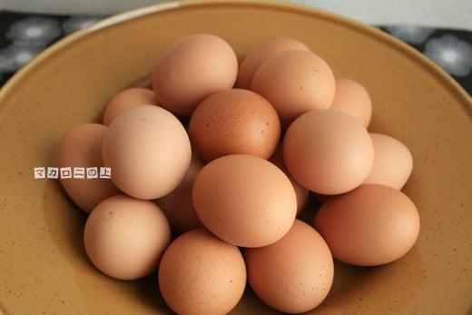 こはくのブログ/マカロニの上のパルミジャーノ-伊勢原卵