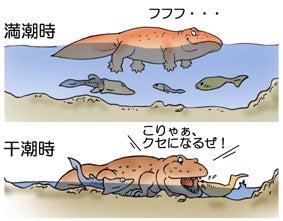 最古の足跡~四肢動物起源は海辺...