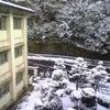 吉井北小学校さん。の画像