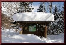 ロフトで綴る山と山スキー-0116_1159