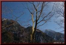 ロフトで綴る山と山スキー-0116_1340