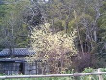 アートゼミこども絵画教室の日記-TS383145.JPG