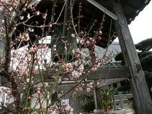 報徳寺住職のブログ