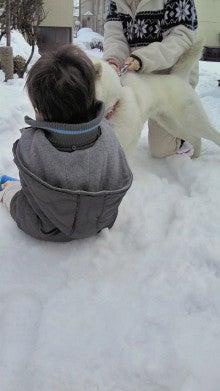 $北海道犬愛子のあいあい日記-ハルくんすきすき