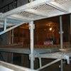 防カビ施工の画像