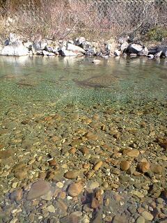 キャンプ場の川原