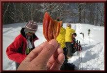 ロフトで綴る山と山スキー-0124_1002