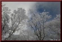 ロフトで綴る山と山スキー-0124_1332