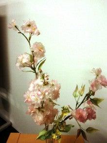 葉っぱのフレディのブログ