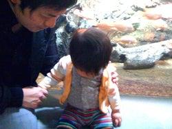 ニンプでした、今はママ。そして社長で、もちろん女!-aquarium3