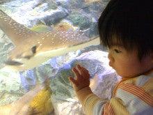 ニンプでした、今はママ。そして社長で、もちろん女!-aquarium2