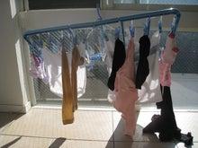 『日々これネタ』-100106洗濯干し_3.JPG