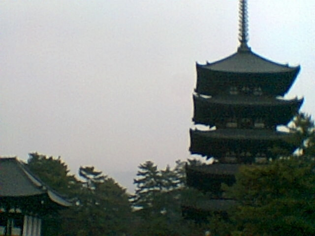 茶々吉とデジ一 のんびり旅-2010/1/31トイデジ興福寺