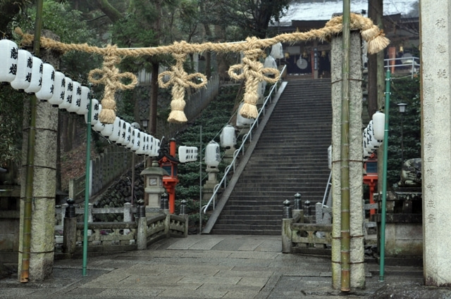 茶々吉とデジ一 のんびり旅-2010/1/31枚岡神社