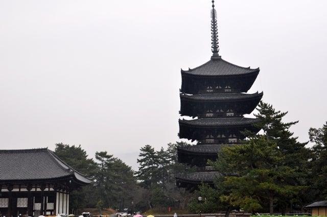 茶々吉とデジ一 のんびり旅-2010/1/31興福寺五重塔